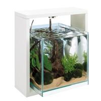 Открытый аквариум со светодиодной подсветкой и фильтром