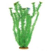 Аквариумное растение Aquatic Plants №5573, 55см.