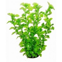 Agvatic Plants РАСТЕНИЕ 34см 3451 (6шт)